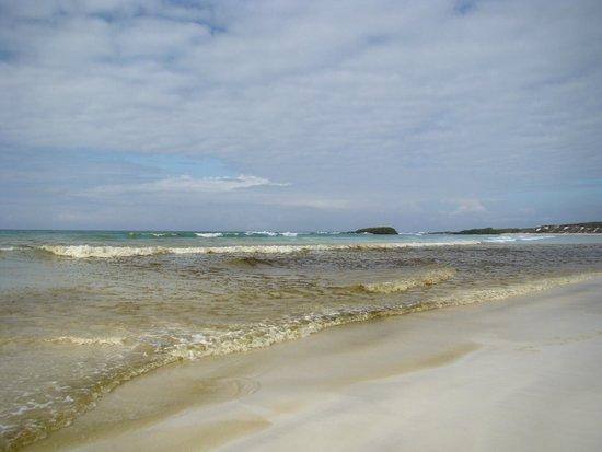 Galapagos Beach at Tortuga Bay: Tortuga Bay - Galápagos