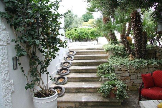 Masseria Salinola: Leading down to reception