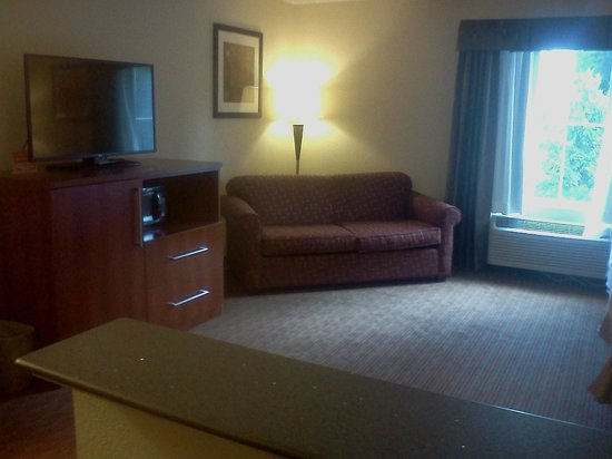 Best Western Indiana Inn: King Suite