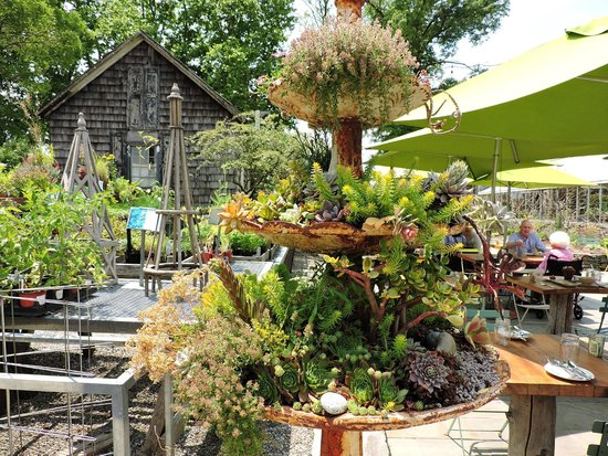 surrounded by beauty - Picture of Terrain Garden Cafe, Glen Mills ...