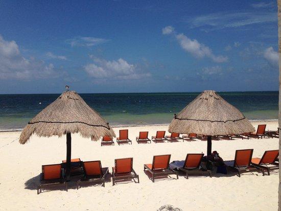 Moon Palace Cancun: Beautiful