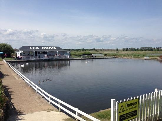 Southwold Boating Lake and Cafe: glorious day!