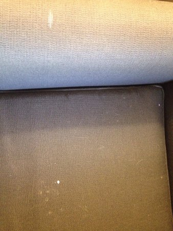 Extended Stay America - Tampa - North Airport: The chair had food and hair spilled all over it