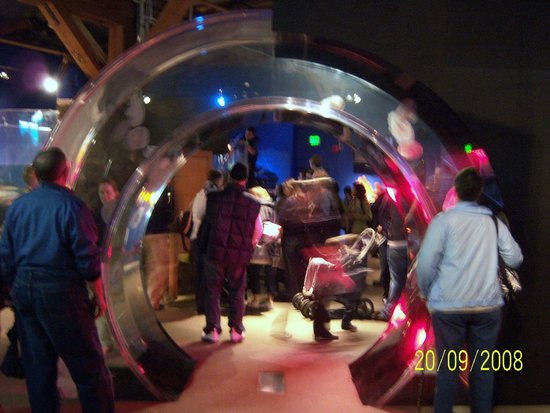Seattle Aquarium : SA4