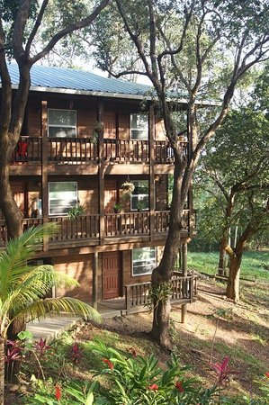 Upachaya Eco-Lodge : The Chakra House - our lodge.