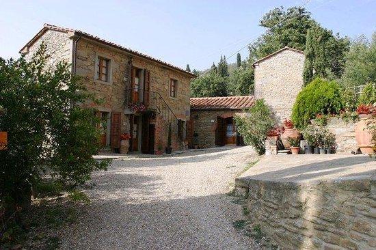 Borgo Dolci Colline: Dolci Colline