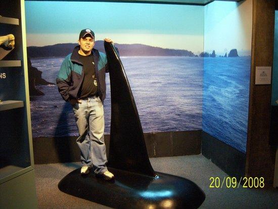 Seattle Aquarium: SA2
