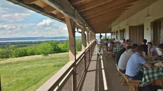 Majthenyi Preshaz: The terrace