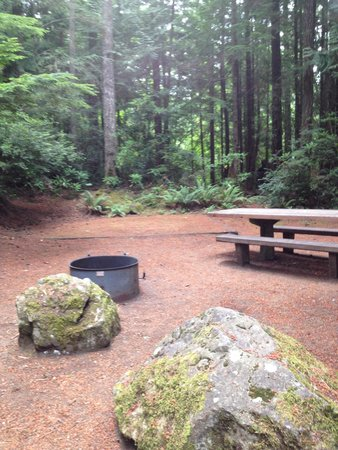 Space #27 at Seal Rock Campground