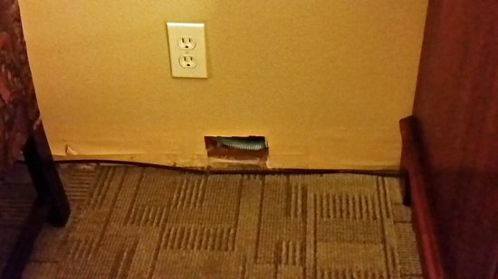 Best Western Mountain View Inn : Typical throughout room