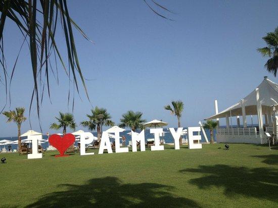 Club Med Palmiye: Tout le monde LOVE Palmiye 2014!