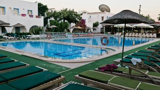Hotel Bagevleri: the hotel pool :)
