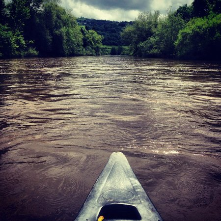 Ross on Wye Canoe Hire - Day Trips: Life on the river