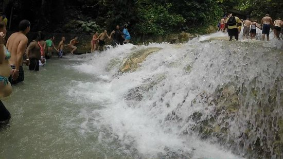 Dunn's River Falls and Park: Bottom of the falls!
