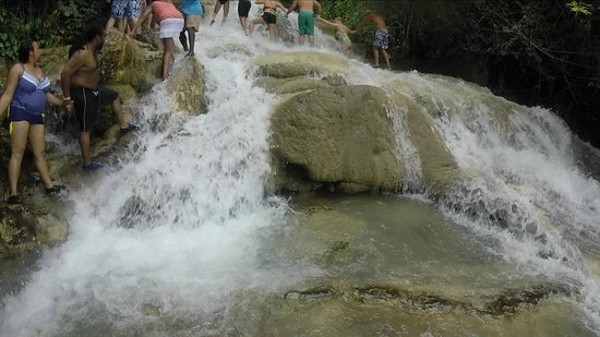 Dunn's River Falls and Park: About half way up the falls!