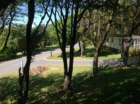 Twitchen House Holiday Village: view from our lovely caravan