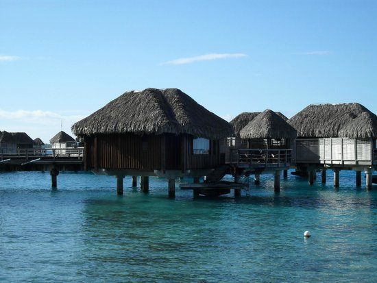 Sofitel Bora Bora Marara Beach Resort : Bungalow 47