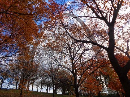 Gateway Arch : Fall in St. Louis