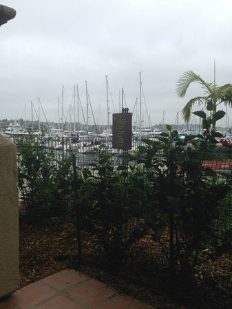 Best Western Plus Island Palms Hotel & Marina: patio view. I took this pic while standing. When seated the view was just bushes & masts.
