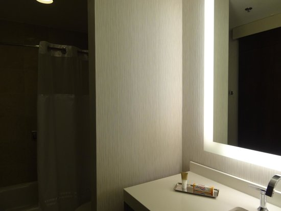 Hyatt Centric Chicago Magnificent Mile : Bathroom