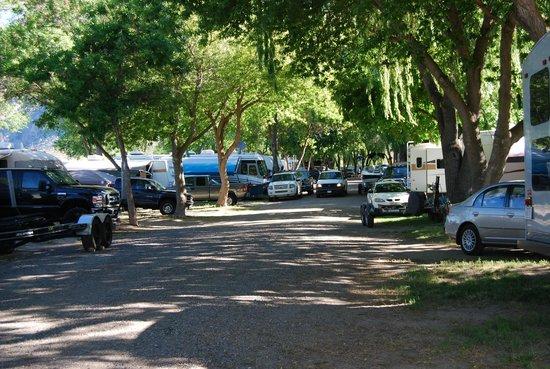 Nk'Mip Campground & RV Resort: Near spot 104