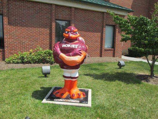 Comfort Inn & Suites : Virginia Tech