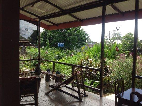 Hotel Inn Jimenez : Sitting Area & Garden