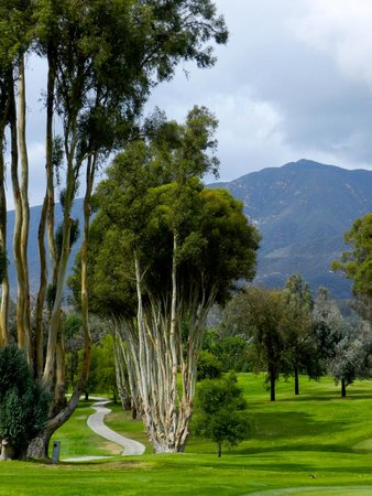 Ojai Valley Inn & Spa : grounds are beautiful