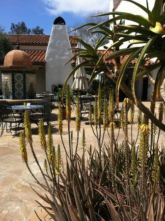Ojai Valley Inn & Spa : outside spa