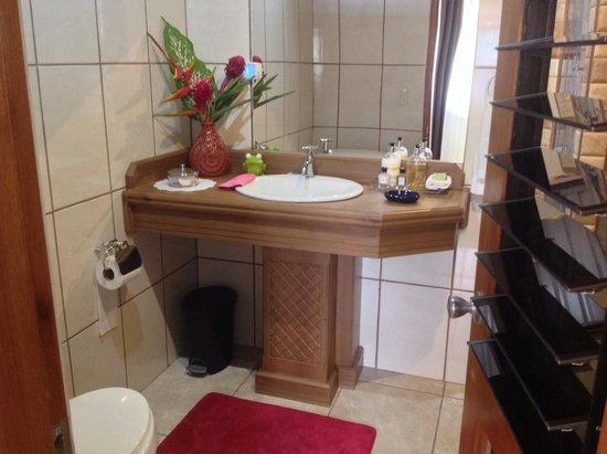 Hotel Inn Jimenez : Iguana Bathroom