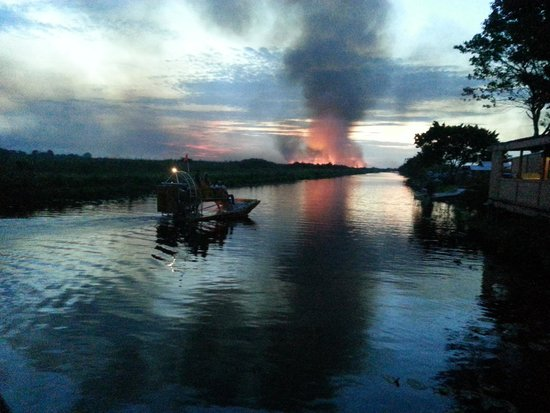 Mack's Fish Camp - Tours: the recent Everglades fire on 6/28