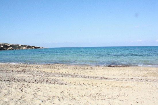 Coral Beach Hotel & Resort: Plaża
