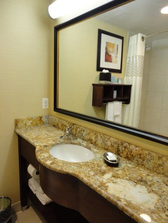Hampton Inn Manhattan-35th St/Empire State Bldg: Banheiro
