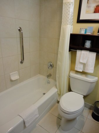 Hampton Inn Manhattan-35th St/Empire State Bldg: Banheiro 1
