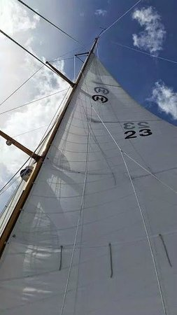 Silverlining Sailing: Sail