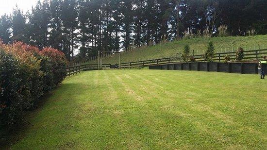 A Kiwi Farmstay: Front lawn