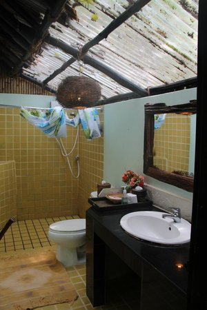 Viking Natures Resort : bathroom