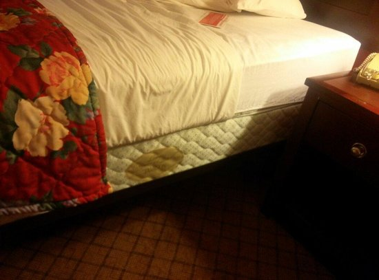 Ramada Lansing Hotel And Conference Center : No bedskirts!