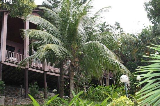 Royal Crown Hotel & Palm Spa Resort: View