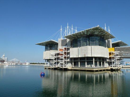 Lisbon Oceanarium : O entorno do Oceanário tb é maravilhoso, merece um passeio.
