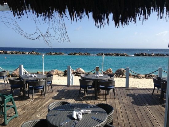 Sunscape Curacao Resort Spa & Casino: from Blue Water Grill