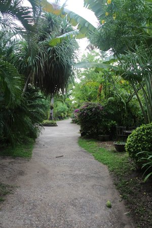 Railay Village Resort: The walkways to get to your room