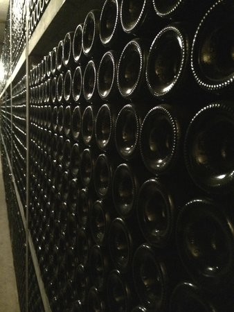 Provence Wine Tours : Wine storage cellars