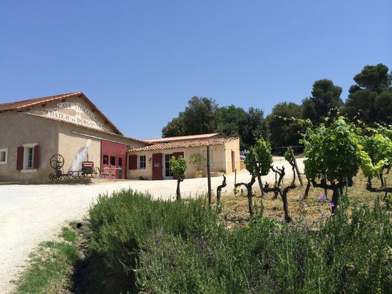 Provence Wine Tours : One of the tasting rooms in Provence