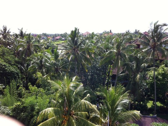 Narasoma Homestay: view from the 3rd floor balcony to jalan bishma