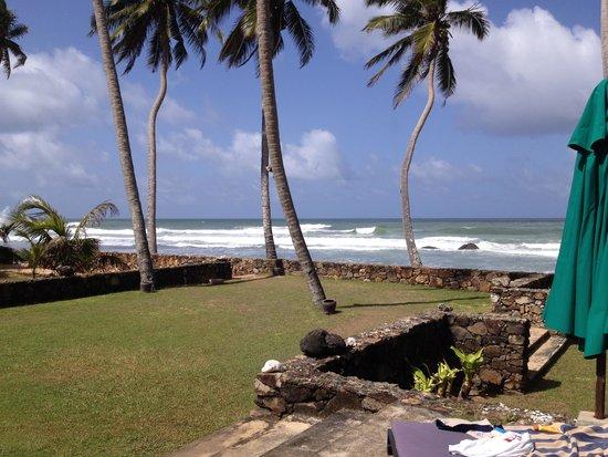 Ambalama Villa: front garden by the beach