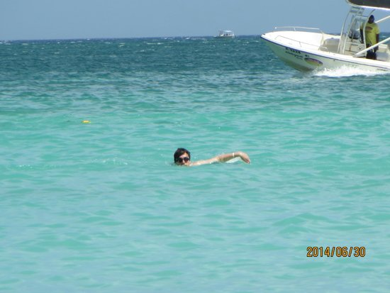 Hotel Riu Palace Aruba: Palm Beach