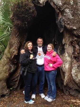 Highlands Hammock State Park : old oak tree