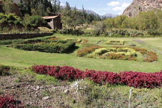 Tunupa Valle Sagrado: jardim