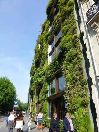 Musee du quai Branly - Jacques Chirac: Outside the quai Branly